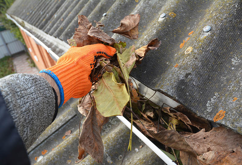 Keeping your gutters clear
